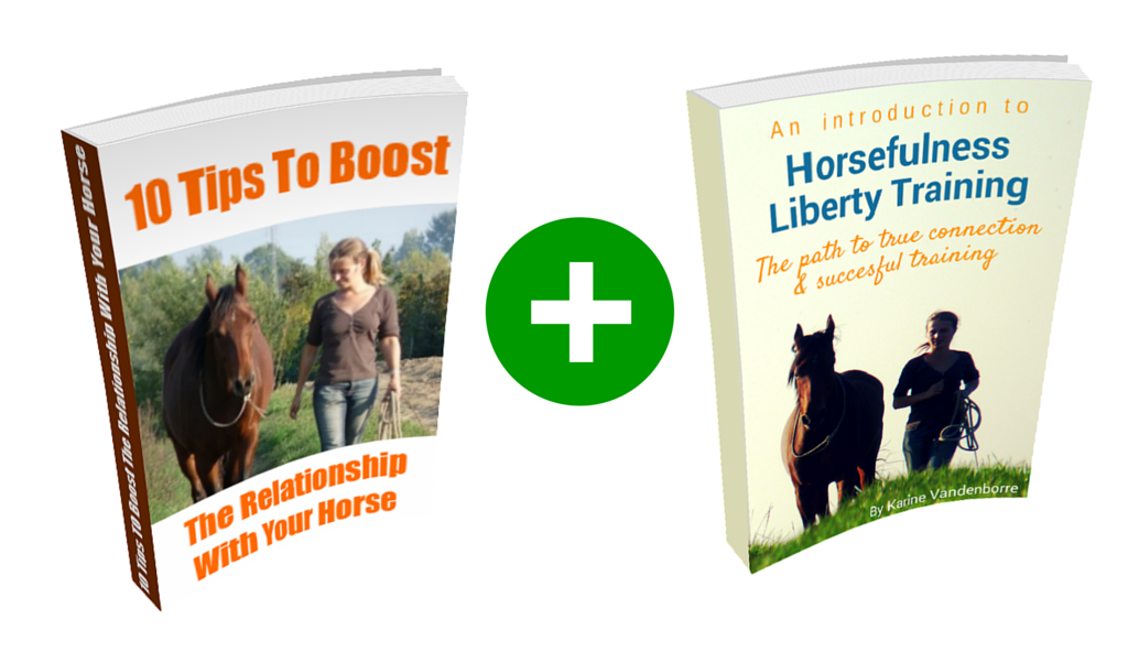 Free ebooks Horsefulness Liberty Training -