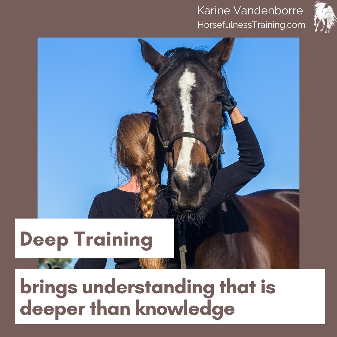 deep training brings understanding that is deeper than knowledge